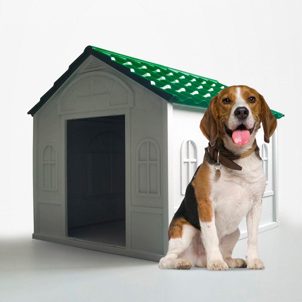 Casa de canil para cães de médio a grande porte em jardim de plástico Dolly